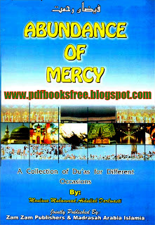 Image for Abundance of Mercy pdf