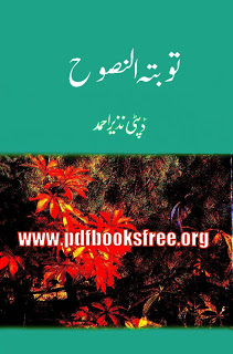 Tauba -Tul- Nasooh Novel